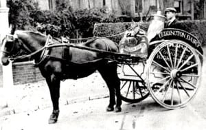 1880 Horse Drawn Dairy Delivery
